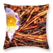 Mount Margaret Spring 14379 Throw Pillow