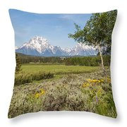 Mount Moran View Throw Pillow by Brian Harig
