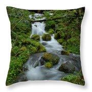 Mount Rainier Brook Throw Pillow