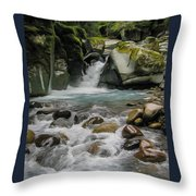 Mount Rainier Falls Throw Pillow
