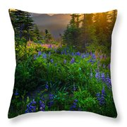 Mount Rainier Sunburst Throw Pillow by Inge Johnsson