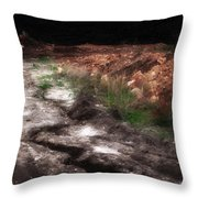 Mount Trashmore - Series Iv - Painted Photograph Throw Pillow