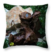 Mount Trashmore - Series Xvi Throw Pillow