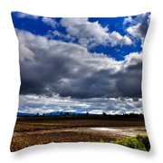 Mount Vernon Farmland - Washington State Throw Pillow
