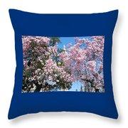 Baltimore's Mount Vernon In Spring Throw Pillow