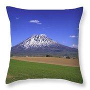 Mount Yotei Volcano Hokkaido Throw Pillow
