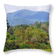 Mountain And Valley Near Brevard Throw Pillow