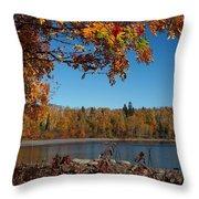 Mountain Ash In Autumn Throw Pillow