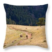 Mountain Biker Throw Pillow