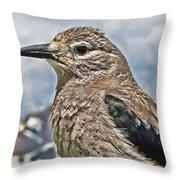 Mountain Bird Throw Pillow