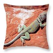 Mountain Boomer Throw Pillow