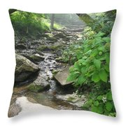 Mountain Brook Throw Pillow