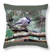 Mountain Chickadee On A Rainy Day Throw Pillow