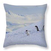 Mountain Climbers Throw Pillow
