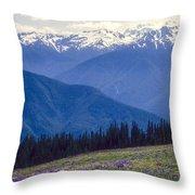 Mountain Color And Snow Throw Pillow