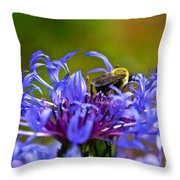 Mountain Cornflower And Bumble Bee Throw Pillow by Byron Varvarigos