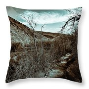 Mountain Creek Path-sundance Utah V3 Throw Pillow