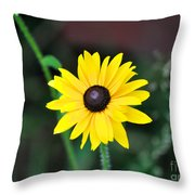 Mountain Daisy Yellow Throw Pillow