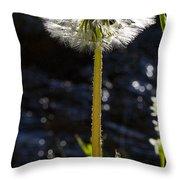 Mountain Dandelion Throw Pillow