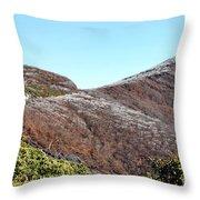 Mountain Frost Throw Pillow