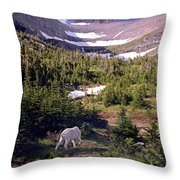Mountain Goat 5 Throw Pillow