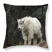 Mountain Goat Kid Throw Pillow