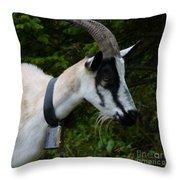 Mountain Goat Throw Pillow
