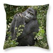 Mountain Gorilla Praying Throw Pillow