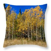 Mountain Grasses Autumn Aspens In Deep Blue Sky Throw Pillow