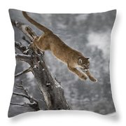 Mountain Lion - Silent Escape Throw Pillow by Wildlife Fine Art