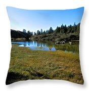 Mountain Marshes 1 Throw Pillow