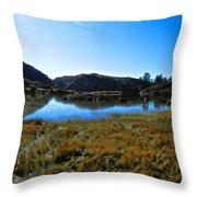 Mountain Marshes 3 Throw Pillow