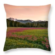 Mountain Meadow Color Throw Pillow