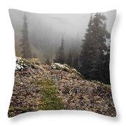 Mountain Meadow Throw Pillow