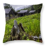 Mountain Mists At Le Conte Throw Pillow