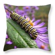 Mountain Monarch 2 Throw Pillow