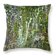Mountain Moss Lichens And Fungi Throw Pillow