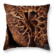 Mountain Mushrooms   #3670 Throw Pillow