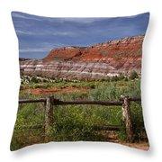 Mountain Of Color Throw Pillow