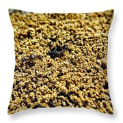 Mountain Out Of An Anthill Throw Pillow