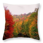 Mountain Road In Fall Throw Pillow