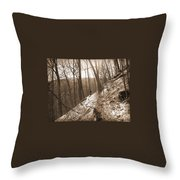 Mountain Side Throw Pillow