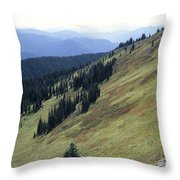 Mountain Slope Throw Pillow