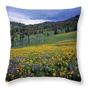 Mountain Spring Throw Pillow