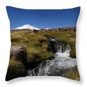 Mountain Stream And Guallatiri Volcano Throw Pillow
