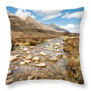 Mountain Stream From Beinn Eighe Throw Pillow