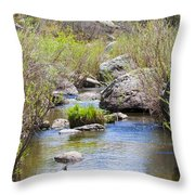 Mountain Stream In Castlewood Canyon State Park Throw Pillow