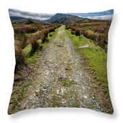 Mountain Track Throw Pillow