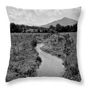 Mountain Valley Stream Throw Pillow