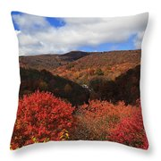 Mountains At Graveyard Fields Throw Pillow